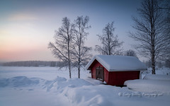 winter boathouse, Finland (pixellesley) Tags: finland snow ice subzero freezing lake trees boathouse dawn mist frost lesleygooding landscape