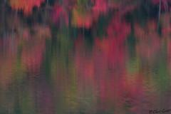 Adirondack reflections (GovMule) Tags: adirondack adirondacks chriscouse fall foliage