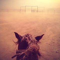 Ahhhhhhh-choooooooooo! (It Feels Like Rain) Tags: westtexas westtexasranches ahchooo dusty sandstorm wind throughthehorsesears ranch ranching spring springintexas