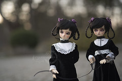 under the sun (cyranka) Tags: talesbycyranka bjd photoart cosette twins