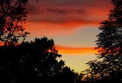 Закат (Alder Vas) Tags: makeevka макеевка пейзаж украина область донбасс донецкая маеевка