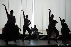 Flamenco en La Chumbera (Landahlauts) Tags: valparaiso andaluca andalucia granada andalusia andalusien baile flamenco cultura andalousie sacromonte andalusie andaluz cante alandalus bailaora andaluzia  patrimoniodelahumanidad  andaluzja andaluzio         lachumbera culturaandaluza           andalouzia andalusiya     fujifilmxpro1 culturadeandalucia auditorioenriquemorente auditoriolachumbera auditoriomunicipalenriquemorente auditoriomunicipallachumbera
