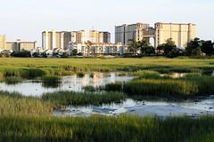 North Beach Tower (studioei8htzero.com) Tags: travel beach nature landscape myrtlebeach horizon southcarolina explore swamp marsh hotels condos northmyrtlebeach northbeachtower
