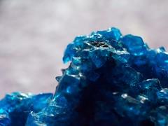 101_2366 (Marcel Oczkowski) Tags: blue macro crystal kodak helios invertedlens 44m c813