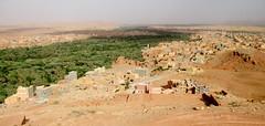 Todgha Oasis (Souss-Massa-Drâa Region, Morocco) (courthouselover) Tags: landscapes morocco maroc tinghir المغرب almaghrib soussmassadrâa soussmassadrâaregion régiondusoussmassadrâa todghaoasis toudraoasis todraoasis