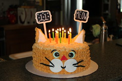 "He wanted a cat cake:) What part of ""Meow"" dont you understand??? :) (TinyAcorn) Tags:"
