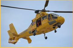 Belgian OO-NHU. (NikonDirk) Tags: coastguard rescue dutch foto belgie noordzee helicopter pedro service belgian dauphin pilot vlaanderen aerospatiale belgische sa365 kustwacht nhv hulpverlening oonhx oonhu nikondirk oonhv