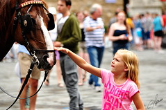 My horse / My caballo (Carlos Pizarro Photography) Tags: plaza horse girl square caballo nia