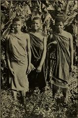 Anglų lietuvių žodynas. Žodis afrikaners reiškia <li>afrikaners</li> lietuviškai.