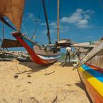 Catamarans thumbnail