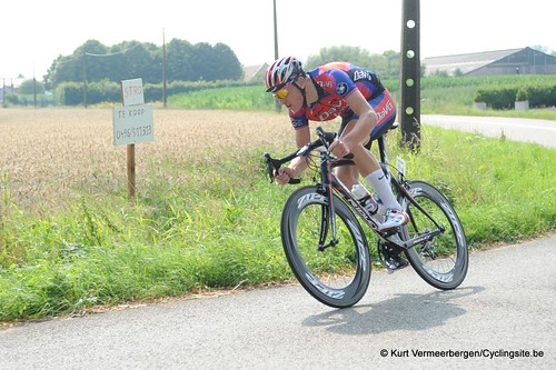 Geel Oosterlo  (152)