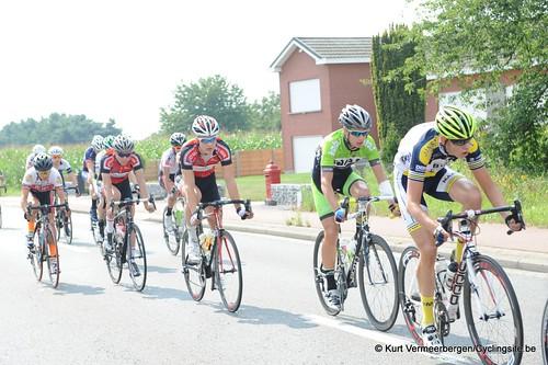 Geel Oosterlo  (56)