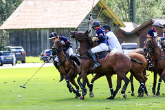 20140824152134-0305.jpg (Guillaume ᕈ. BOᕈᕈE) Tags: horses horse schweiz switzerland airport suisse final mclaren bern ponies finale polo flugplatz gstaad saanen