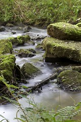 KevinKevkoAndres_August2014_32 (Kevin Kevko Andres) Tags: blue green nature water creek forest canon eos wasser long exposure stones natur steine bach usm grn blau wald langzeitbelichtung ef70200mm f4l outofcam 100d