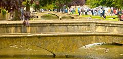 AROUND BOURTON (chris .p) Tags: uk summer england nikon view bridges august scene cotswolds gloucestershire gb bourton cotswold 2014 bourtononthewater d610 windrush 28to300
