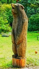 Wood Art 09 (baer99) Tags: wood art germany lumix kunst natur holz baum hdr br baer kettensge dmcfz30 zellah