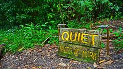 Quiet Trees At Work (Edmund Garman) Tags: vacation hawaii state maui wayside 2013 kaumahina haikupauwela