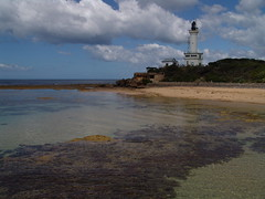 Great Ocean Road 016 (mart.panzer) Tags: pictures vacation beach nature coast nationalpark holidays photos top australia victoria highlights impressions australien greatoceanroad twelveapostles 12apostles portcampbell mustsee bestoff martinpanzer gerhardpanzer