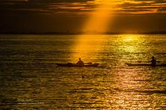 illumination (non stop creations- Sherry Landon) Tags: ocean sunset summer people sun silhouette golden nikon ray path ripple illumination surrey crescentbeach sherry kayaks landon d800 nonstopcreations