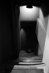 GATEWAY (YOUANDMEORUS) Tags: bw monochrome stairs bn gateway leitz tetsuyamiyamori