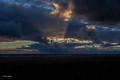 Newquay Beach (Faren Matern) Tags: newquay canonef35mmf14lusm canon5dmarkii
