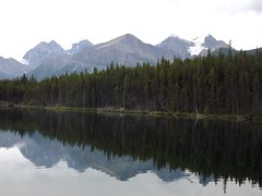 Herbert Lake (h willome) Tags: lake canada alberta banffnationalpark 2014