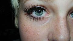 Freckled (copaafacee) Tags: blue eye photography nikon artist lashes eyelashes blueeyes fake makeup pale greeneyes mascara edit mua cosmetology makeupartist eyelinr l310