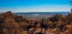 horse naturaleza mountain argentina marina caballo paisaje explore cordoba latinoamerica montaña balasini