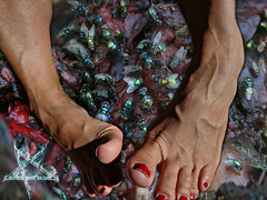 Moroccan Model 109 (mohawkvagina) Tags: sexy feet rose female foot footfetish moroccan bellecita womanfeet veiny sexyfeet feetfetish womenfeet maturefeet veinyfeet oldladyfeet milffeet sexyveinyfeet sexyveiny veinymoroccan veinymoroccanfeet bellecitafeet superveiny rosefeet oldwomanfeet moroccanfeet bellecitaveiny
