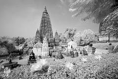 India_0174