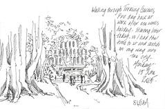 15Jun15 Treasury Gardens (alissa duke) Tags: melbourne moretonbayfig treasurygardens