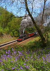 Bluebells at Birkhill (Treflyn) Tags: train rail railway steam locomotive bluebell boness morayshire kinneil gresley birkhill d49 62712