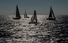 Race day (Ian Toms) Tags: locateguernsey guernsey landscape winter sailing guernseylife race stpeterport yacht raceday sun guernseyharbours yachtrace backlit boat yachts guernseyrace sunlight guernseystyle visitguernsey windpower sea sealife