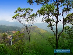 Devon Falls (Olendra Photography By Damien Wijerathne) Tags: pictures travel flowers sunset plants sun tree green nature fruits grass fashion forest photography yahoo amazing flickr post photos sony images falls calender devon magazines facebook naturephotography nuwaraeliya devonfalls olendraphotography damienwijerathne