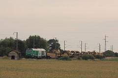 BB 75074 / Hazebrouck (jObiwannn) Tags: train locomotive prima fret ttx ferroviaire