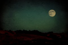 Tonight's Moonrise... (Christopoulos (off again)) Tags: trees sky moon hills moonrise textured 290 picmonkey