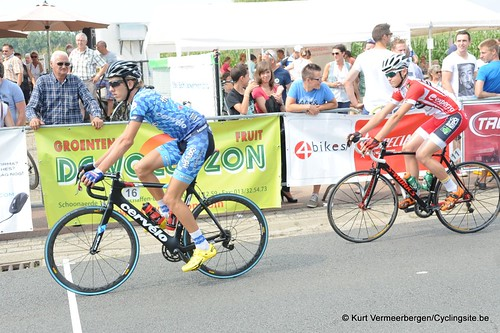Geel Oosterlo  (7)