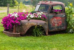 Repurposed Truck (Me in ME) Tags: minnesota fence sandstone canon5d mn basslake hff classof59 sandstonehighschool
