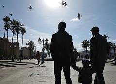 L'Avenir en Main (Nadir Moha) Tags: pigeons silhouettes parent maroc enfant contrejour oiseaux rabat avenir babelhad
