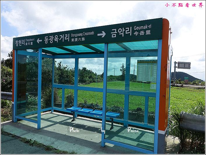 濟州島innisfree館 綠茶博物館 (83).JPG