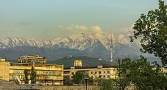 almaty skyline (Russell Scott Images) Tags: kazakhstan almaty