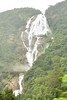 The Iconic Dudhsagar Falls (dakshsharma) Tags: waterfall waterfalls karnataka dudhsagarwaterfalls
