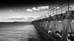 Blyth Beach (Silent Eagle  Photography) Tags: sea bw seascape beach metal clouds canon silver mar woods rocks northumberland sep blyth sadows silenteaglephotography silenteagle09 mg9331bw
