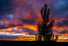 ¡Oh cielos! (javipaper) Tags: sunset clouds atardecer cielo nubes