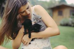 *Heavy breathing* (David Olkarny Photography) Tags: brussels cute love bruxelles cuteness mignon chaton davidolkarny olkarny
