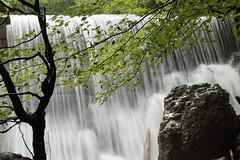 Waterfall (sabrinaschoenhardt) Tags: wood water forest wasser natur grau steine bewegung grn braun holz wald