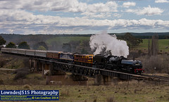 DC6029, 4403 & 44208 near The Ridgeway (Les 'LowndesJ515' Coulton) Tags: coco newsouthwales canberra steamtrain steamlocomotive espee theridgeway 4403 southernnsw standardgauge 6029 dualcontrol australianrailwayhistoricalsociety beyergarratt 44class 442class articulatedlocomotive 44208 canberrabranch 484484 alcogoodwin rpaunswad60class railpage:class=85 railpage:loco=6029 rpaunswad60class6029 canberraarhs dc6029 dcclasssteam 9s90 molongloriverbridge ad60garratt