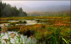 Scène d`automne 6 (josboyer) Tags: de lest cantons parcnationaldumontorford parcdumontorford parcsquébec