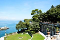 Landscape. (-Starlight-.) Tags: blue sea summer italy tree green landscape nikon italia mare italu bluesky trieste summer2014