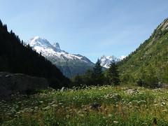 Path from Col des Montets to Lacs des Chserys @ Hike to Lacs des Chserys, Lac Blanc, Lac Cornu & Lacs Noirs @ Rserve Naturelle des Aiguilles Rouges @ Chamonix (*_*) Tags: summer mountain lake france alps nature alpes europe natural hiking july sunny hike trail savoie chamonix montblanc hautesavoie 2014 rhonealpes rservenaturelledesaiguillesrouges sentierdeslacsalpins